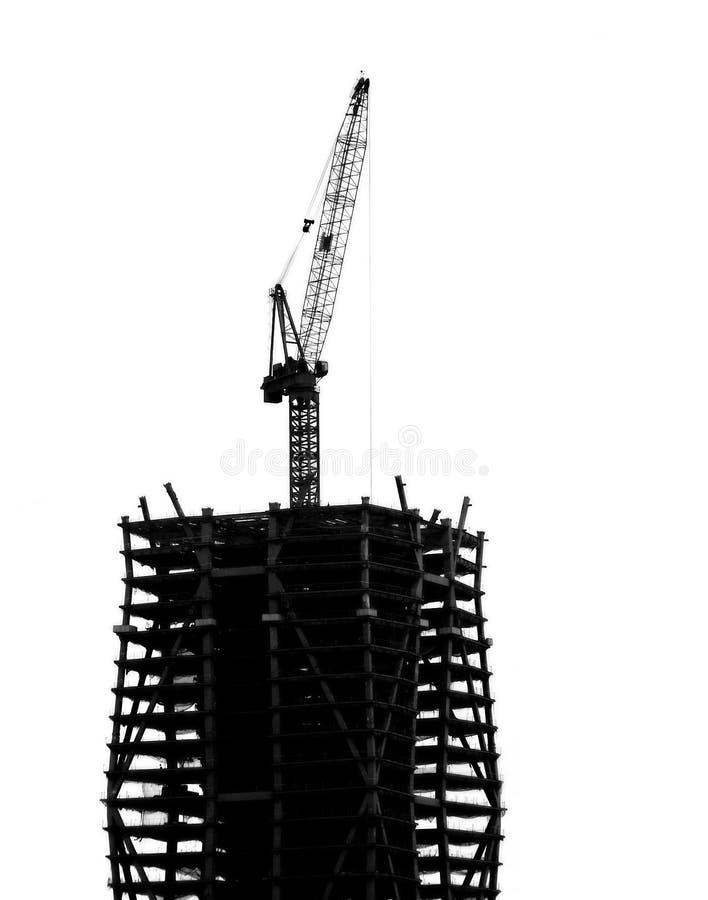 De hoge Bouw van de Stijging met Kraan stock fotografie