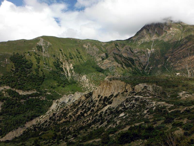 De hoge Dichtbegroeide Bergen van Himalayan royalty-vrije stock foto's