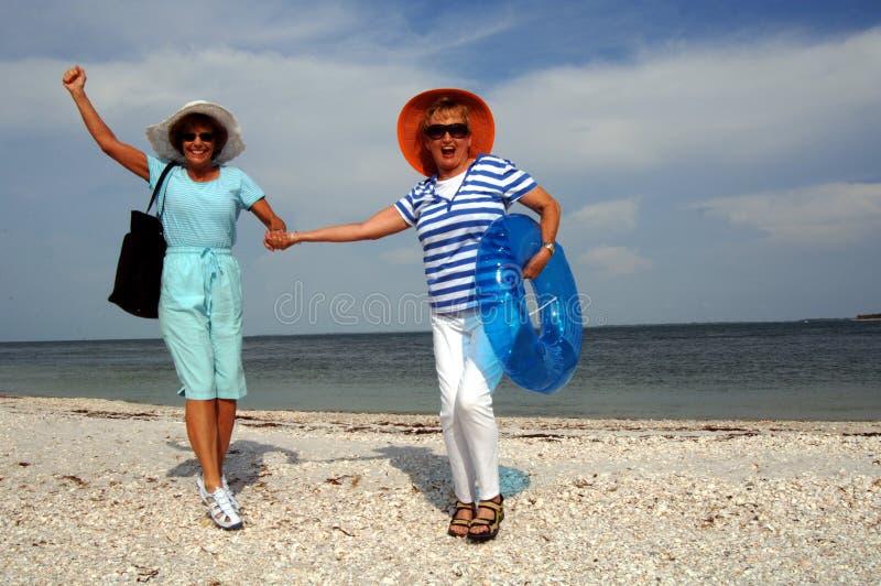 De hogere vakantie van het vriendenstrand stock afbeelding