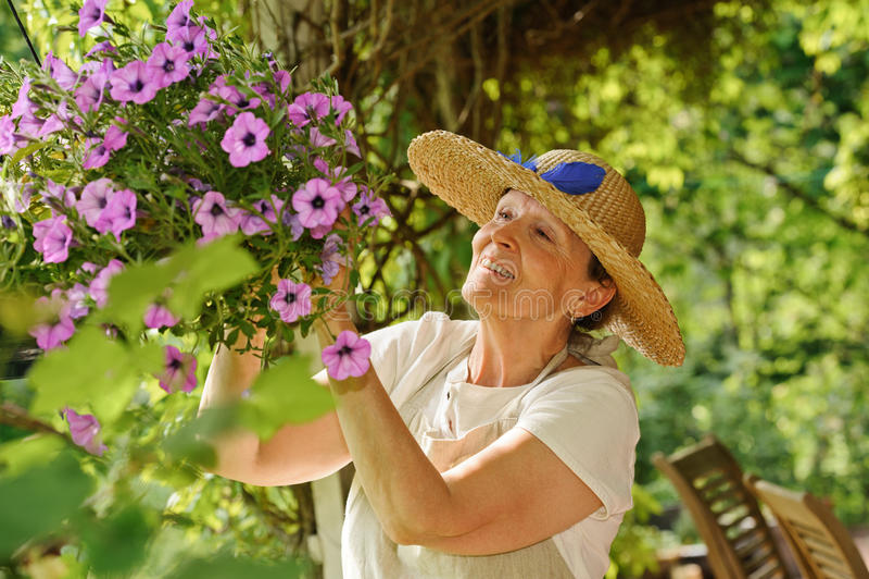 De hogere vrouw neigt bloemen royalty-vrije stock fotografie