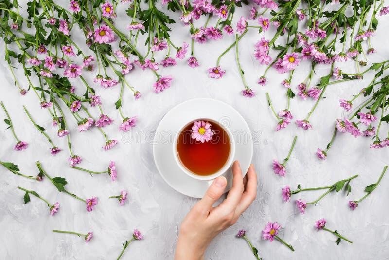 De holdingskop thee van de vrouwen` s hand door roze madeliefjes wordt omringd dat royalty-vrije stock afbeelding
