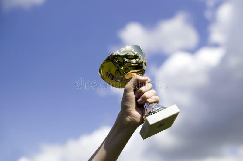 Download De Holdingskop Van De Mens Van Het Winnen Stock Afbeelding - Afbeelding bestaande uit hemel, kampioen: 10782151