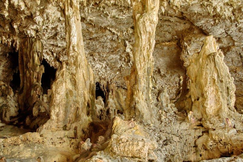 De holen van Palaha - kolommen stock foto's