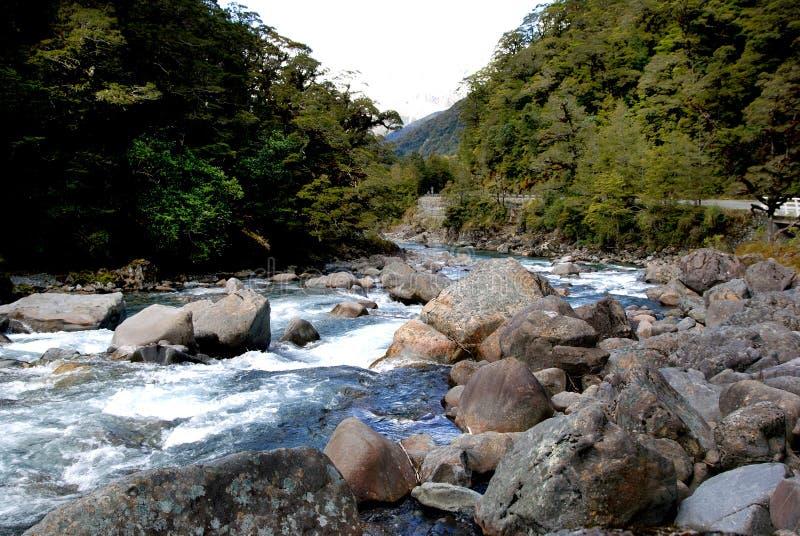 De Hollyford-Rivier Fiordland NZ royalty-vrije stock foto