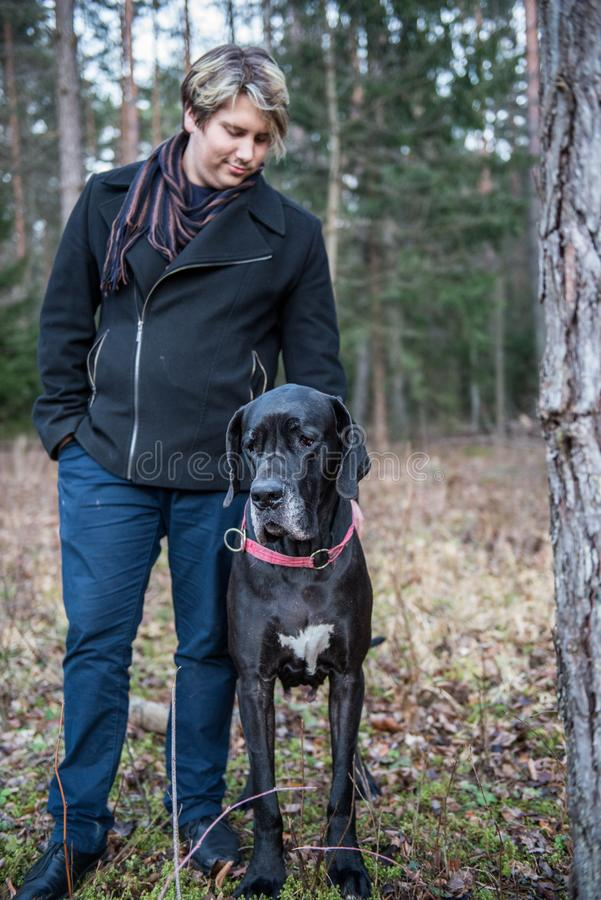 De hond en de mens van great dane royalty-vrije stock afbeeldingen