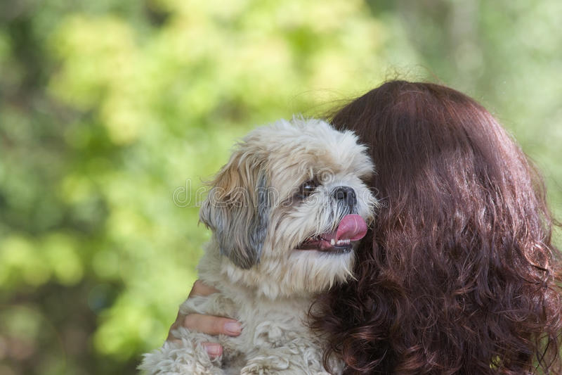De hond en zijn eigenaar zijn de beste vrienden royalty-vrije stock fotografie
