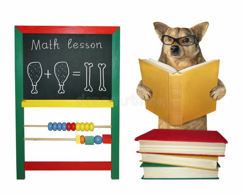 De hond onderwijst dichtbij een bord 2 royalty-vrije stock afbeelding