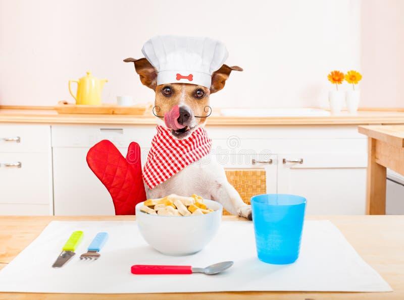 De hond van de chef-kokkok in keuken stock foto