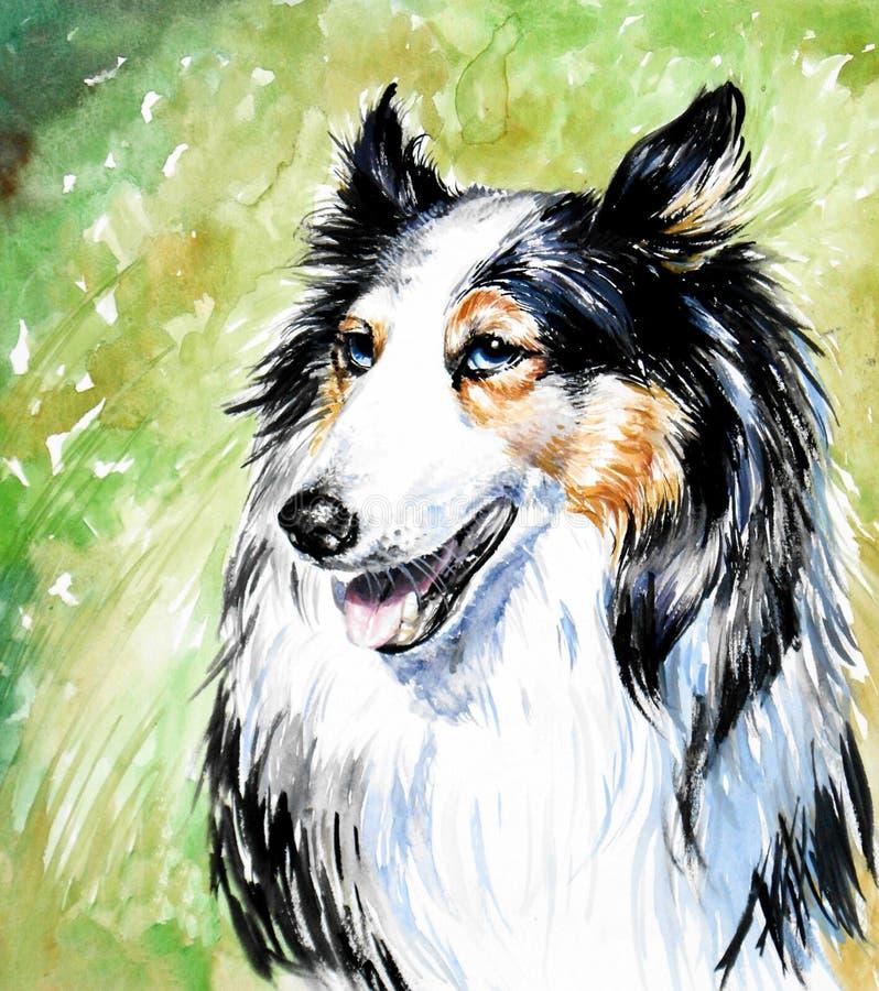 De hond van de collie stock illustratie