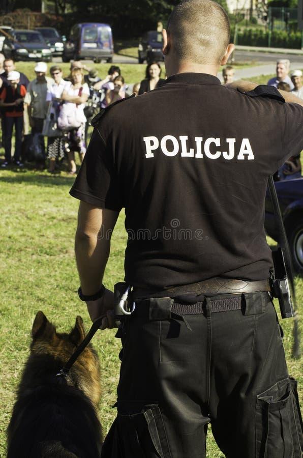 De hond van de politie stock afbeeldingen