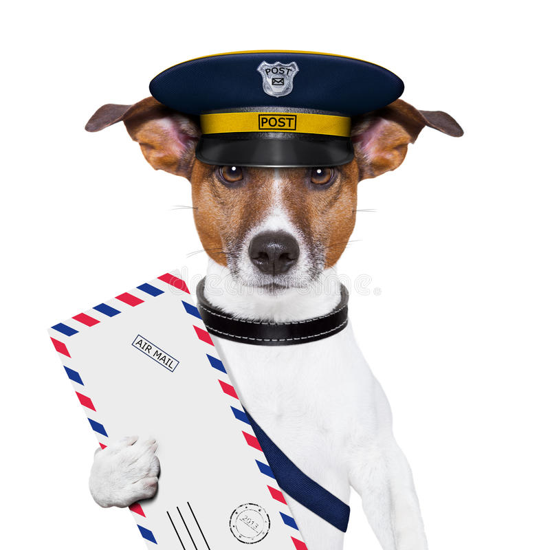 De hond van de post stock foto
