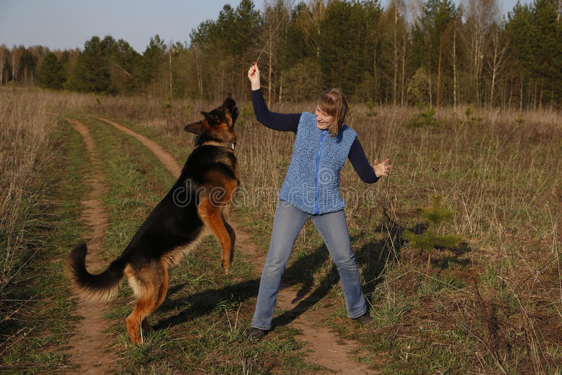 De hond van het meisje en van de Duitse herder stock foto