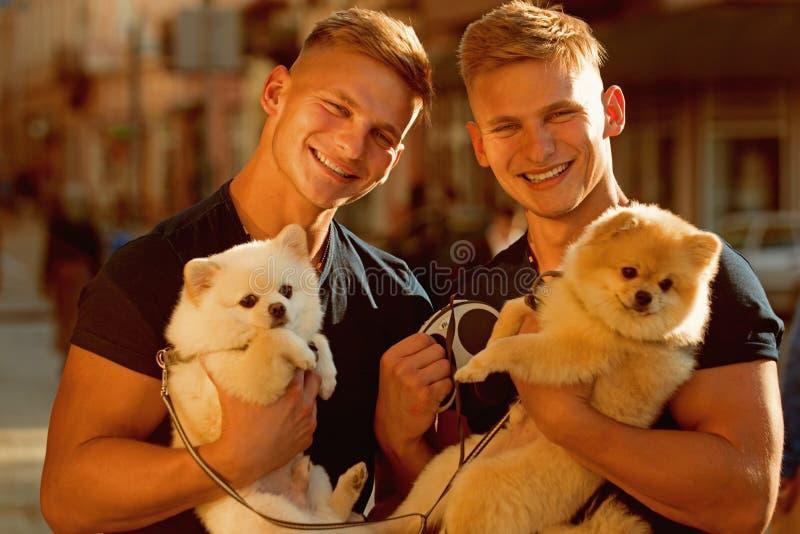 De honden brengen hen vreugde Spiermensen met hondhuisdieren Gelukkige tweelingen met spierblik Spitz de honden houden van het be royalty-vrije stock foto's