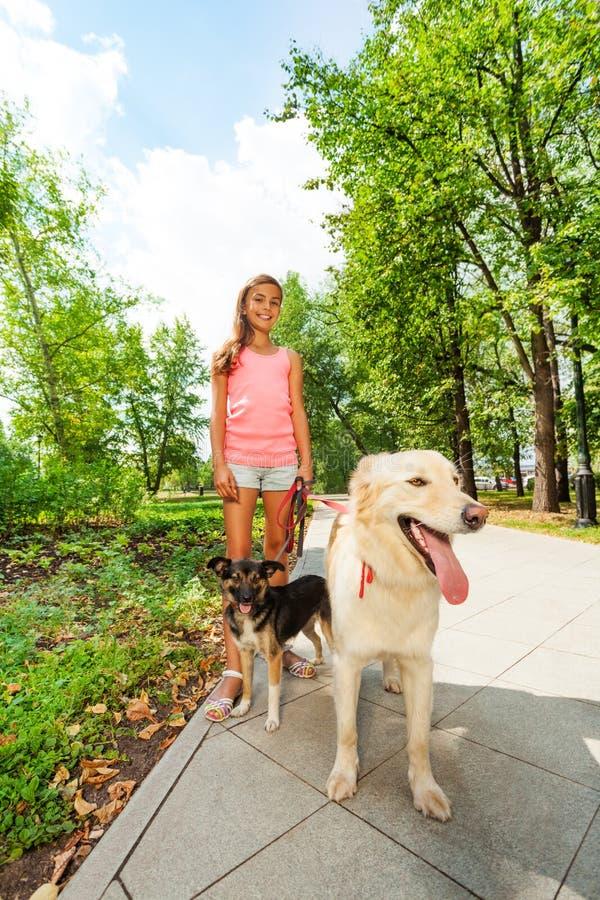 De honden van de tienergang in park royalty-vrije stock afbeelding