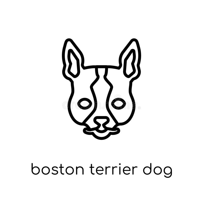 De hondpictogram van Boston Terrier In modern vlak lineair vectorboston royalty-vrije illustratie
