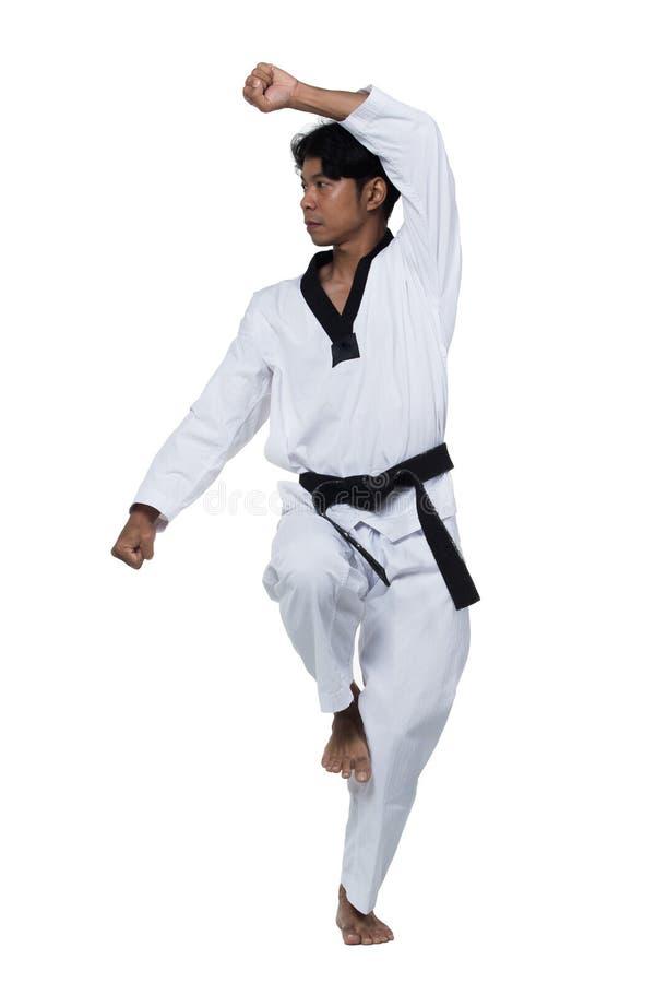 De hoofd knappe mens van het Zwart bandtaekwondo royalty-vrije stock afbeeldingen