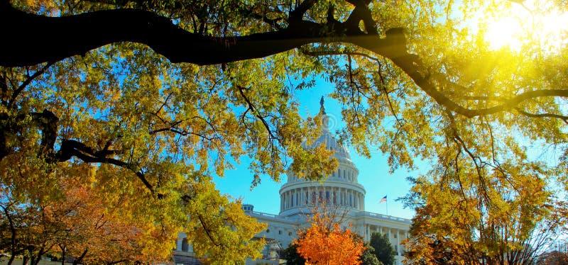 De Hoofdbouw van de V.S. met zonlicht in de Herfst, Washington, gelijkstroom royalty-vrije stock foto's