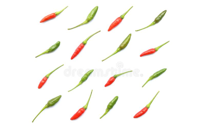 De hoogste mening van geïsoleerde rode en groene verse Thaise die Spaanse peper in keurige rijen, Vlakte wordt geschikt legt stij stock fotografie