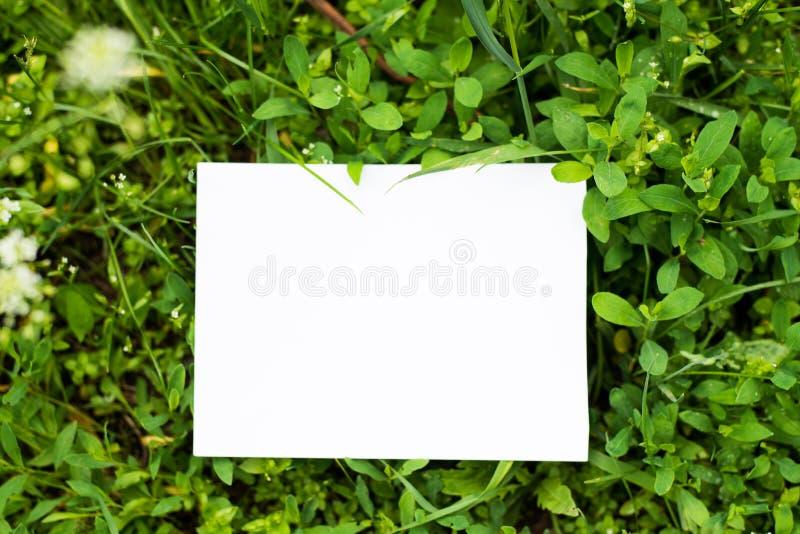 De hoogste meningsspot gaat omhoog met document notaplaats weg voor tekst Onechte groene achtergrond met exemplaarruimte stock afbeelding