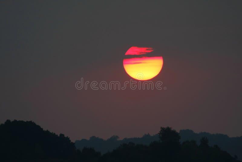 De hoogste zonsondergang van de boom stock afbeelding