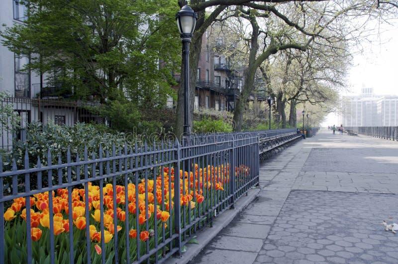 De hoogtenpromenade van Brooklyn stock afbeeldingen