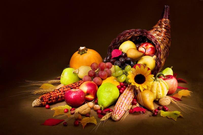 De Hoorn des overvloeds van de herfst royalty-vrije stock afbeelding