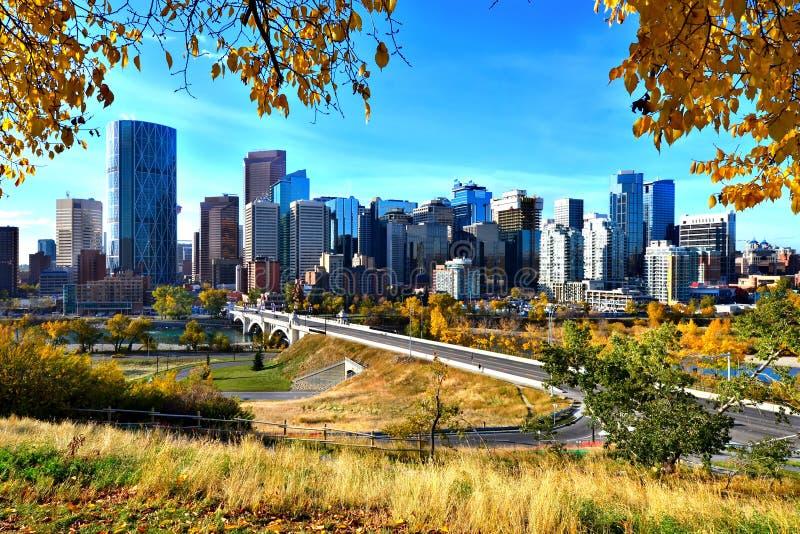 De horizon van Calgary tijdens de herfst stock foto's