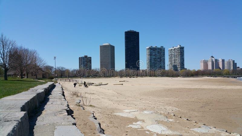 De horizon van Chicago van strand royalty-vrije stock foto