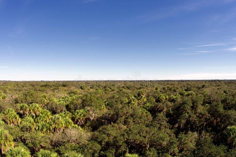 De Horizon van Florida royalty-vrije stock foto's