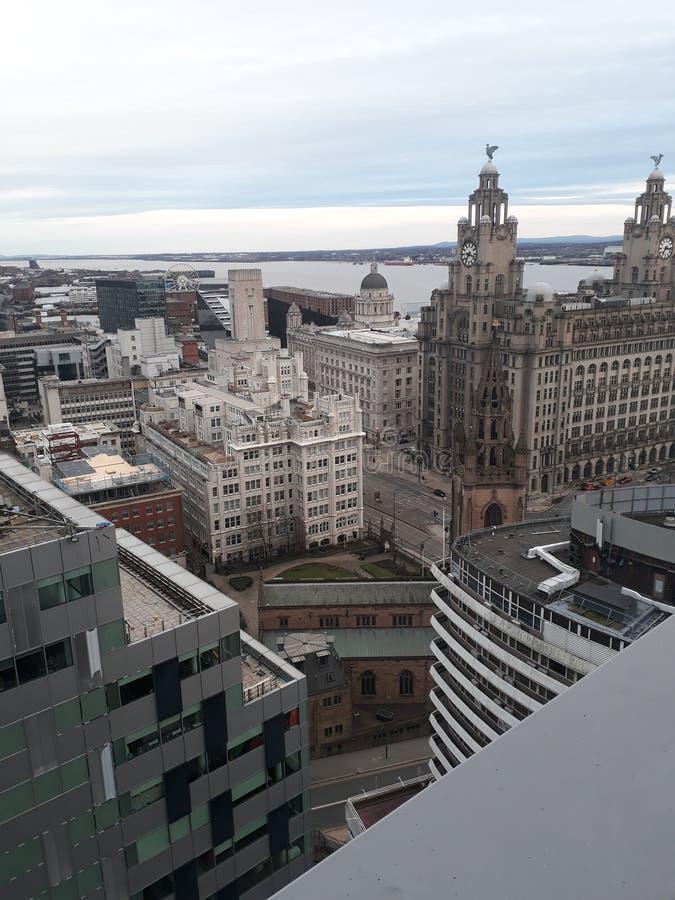 De horizon van Liverpool royalty-vrije stock foto