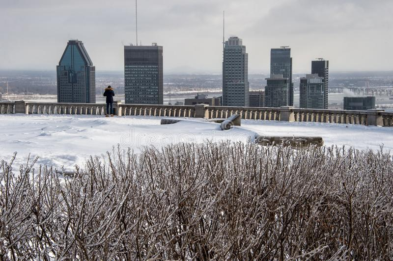De horizon van Montreal in de winter stock afbeelding