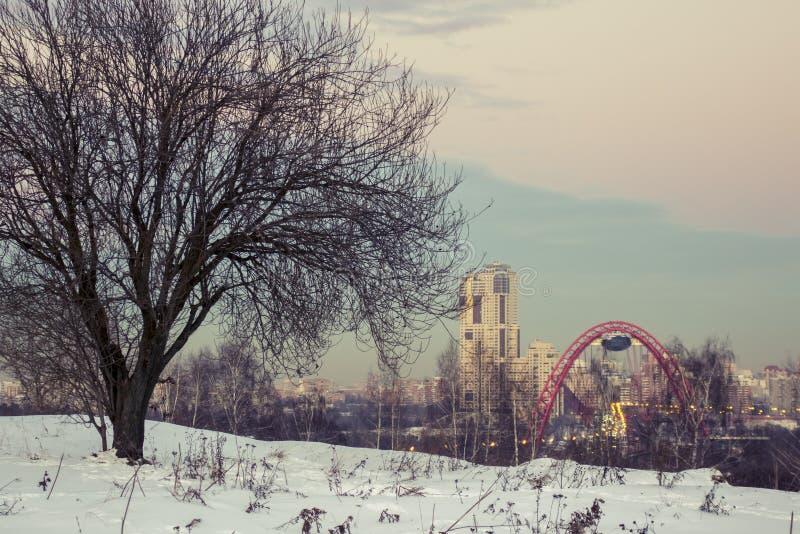 De horizon van Moskou in de winter stock foto