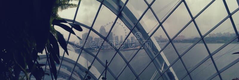 De horizon van Singapore door koepel stock afbeeldingen