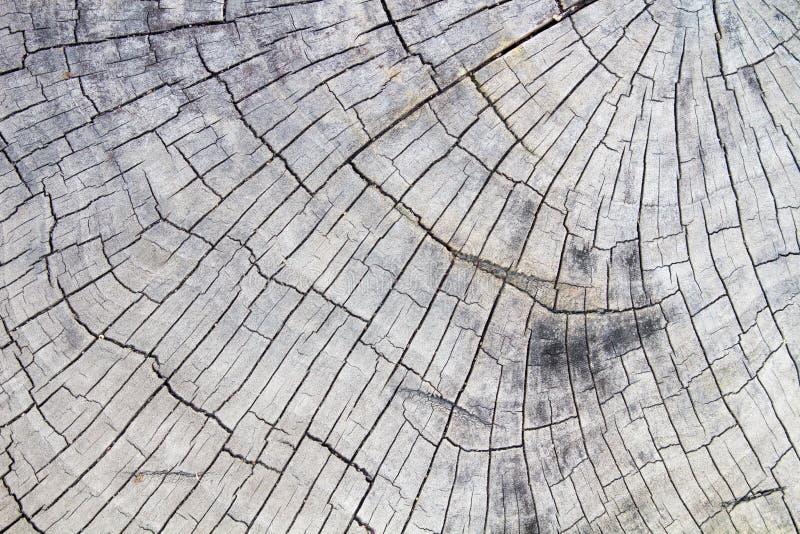 De Houten achtergrond, Houten oppervlakte, Houten textuur stock afbeeldingen