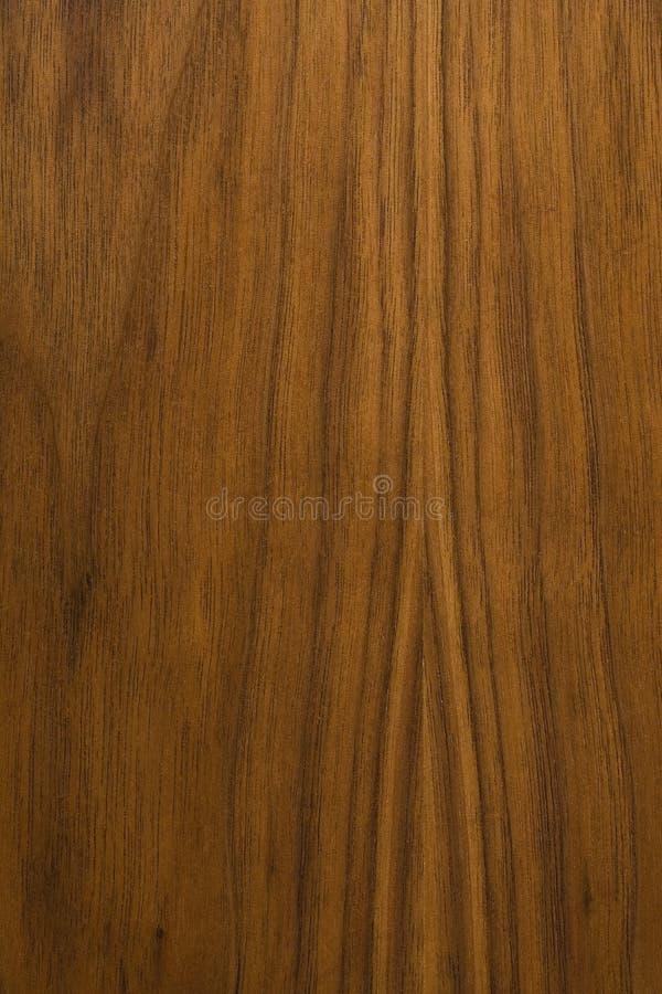 De houten achtergrond van de okkernoot stock fotografie