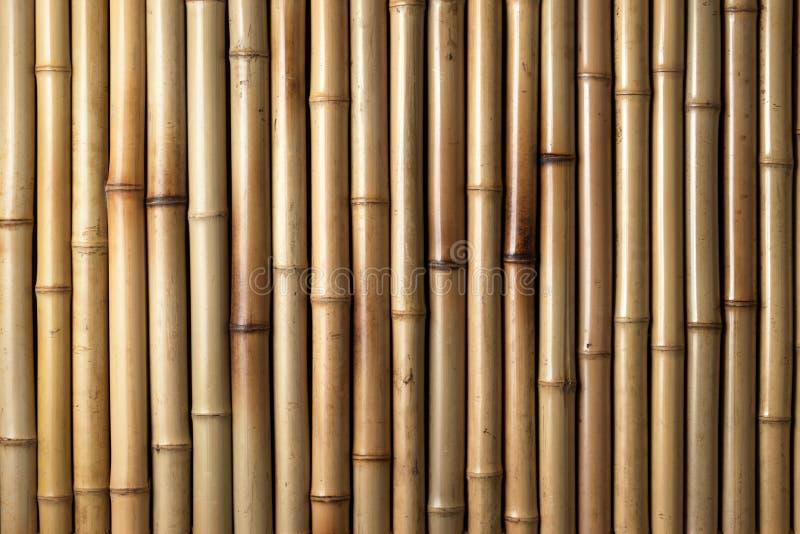 De houten Achtergrond van het Bamboe royalty-vrije stock afbeeldingen