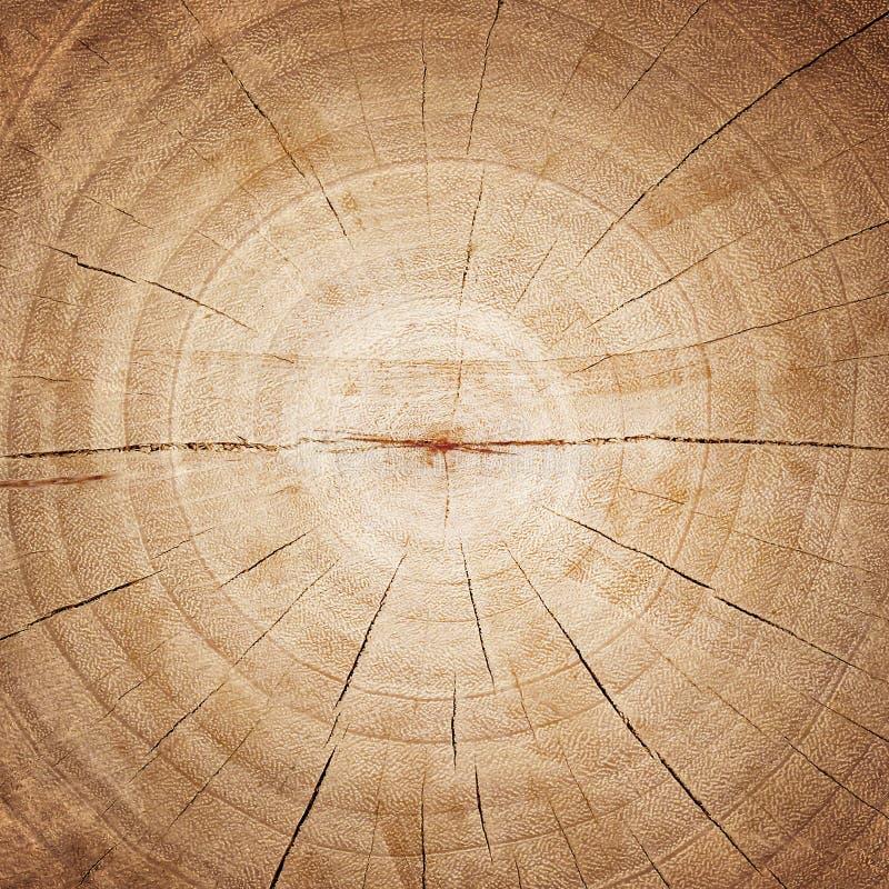 De houten achtergrond van de ringentextuur gebarsten houten besnoeiing stock foto's