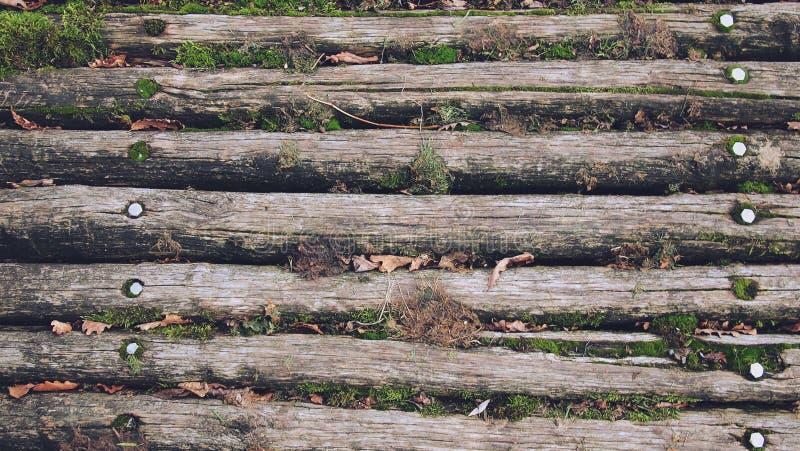 De houten bruine planken van de textuurvloer stock afbeelding