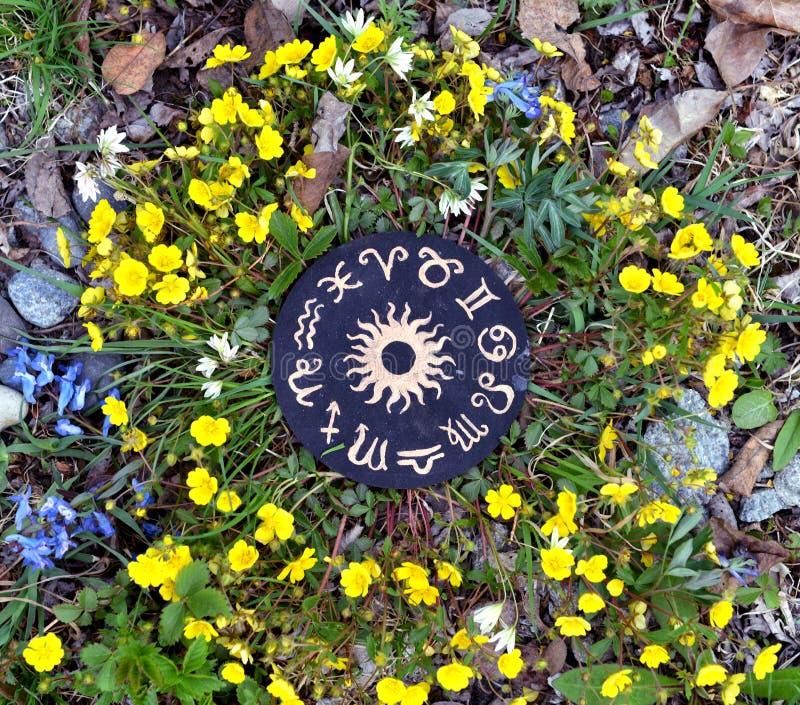 De houten cirkel met dierenriem ondertekent grafiek in bloemen stock foto