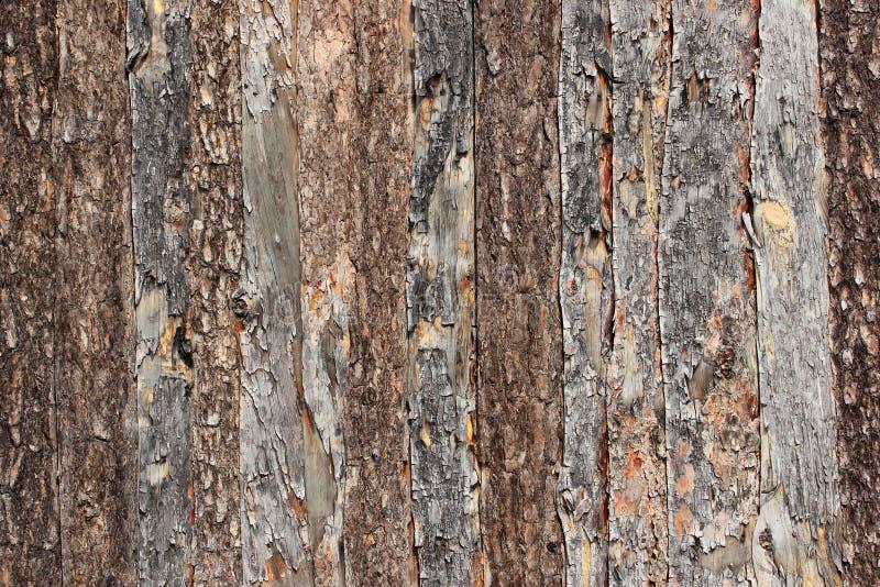 De houten close-up van de omheiningstextuur - lichtbruine natuurlijke achtergrond royalty-vrije stock fotografie