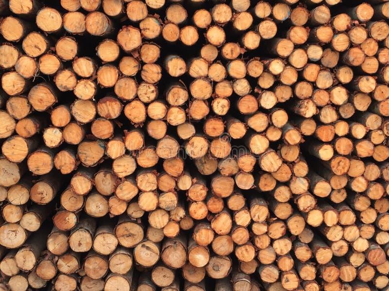 De houten groep van de logboekbundel royalty-vrije stock foto's