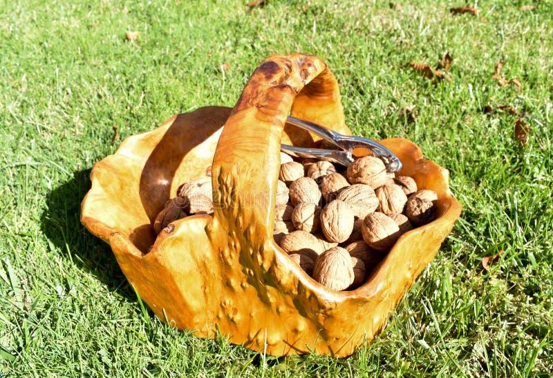 de houten mand van een wortel van een boomhoogtepunt van enkel geoogste noten en een notekraker maakte in metaal op de hoop van n stock afbeeldingen