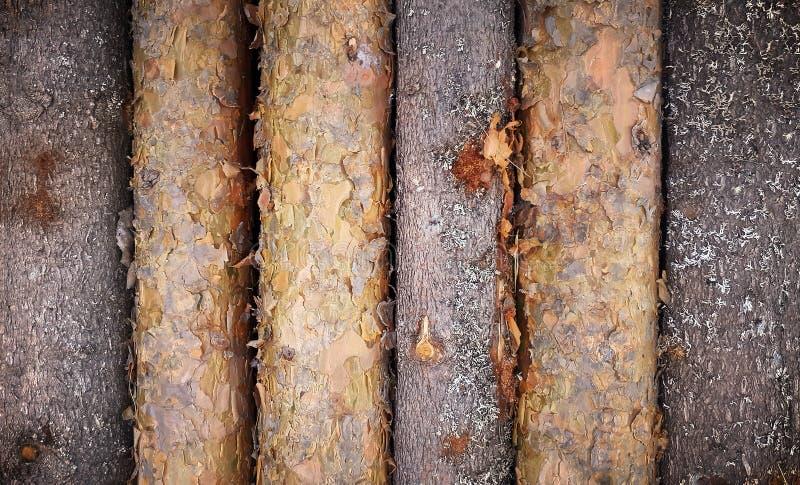De houten muur logboek van de achtergrond geweven patroonplank met vignetkader royalty-vrije stock foto's