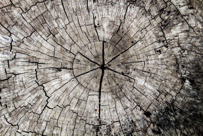 De Houten oppervlakte, houten textuur voor achtergrond stock fotografie