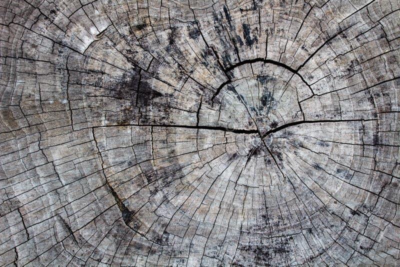 De Houten oppervlakte, houten textuur voor achtergrond royalty-vrije stock fotografie