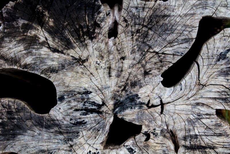 De Houten oppervlakte, houten textuur voor achtergrond stock foto