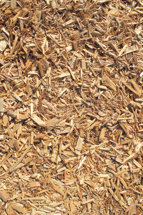 De houten spaanderachtergrond van de ceder stock afbeeldingen