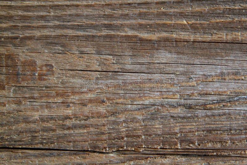 De houten textuur in antiquiteit ziet eruit royalty-vrije stock fotografie