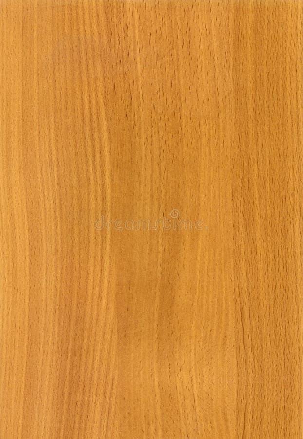 De houten textuur van de Beuk van HK stock afbeeldingen