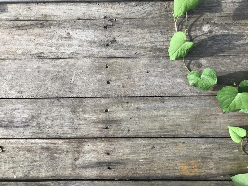 De houten textuur van het plankpatroon met groene bladachtergrond royalty-vrije stock foto's